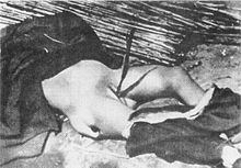 Nanjing_Massacre_rape_killed[1].jpg